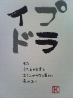 20100212084326.jpg