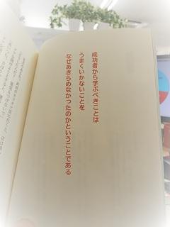 DSC_3065 (002).JPG