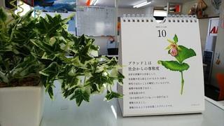 DSC_3830 - コピー.JPG